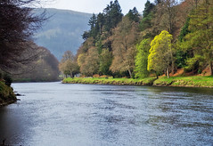 The River Tay (Spring time) (eric robb niven) Tags: ericrobbniven scotland dunkeld perthshire landscape rivertay spring