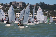 EQUIPE 1 (yctahiti) Tags: nz napier national 2017 optimist