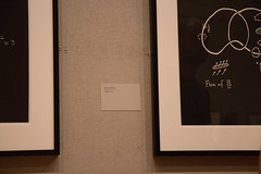IMG_0066 (armadil) Tags: nyc metropolitanmuseumofart concinnitas artfromequations equation equations