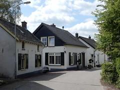 de Lingedijk, Tricht (gemeente Geldermalsen) (bcbvisser13) Tags: huisjes cottages weg road dijk perspectief lingedijk tricht dorp village gemgeldermalsen gelderland nederland eu