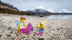 A Gift for Aria (Reiterlied) Tags: 1020mm angle beach butterfly cmf17 d500 dslr fairy fjord girl lego legography lens minifig minifigure moss mountain nikon norway photography reiterlied sigma stuckinplastic toy uwa wide wings