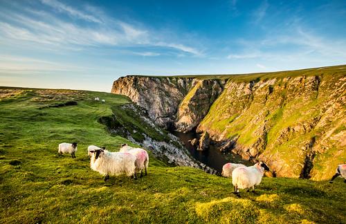 Ierland_BasvanOortHR-145
