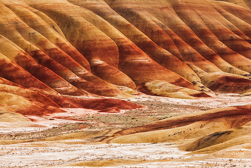 Red Painted Hills Closeup