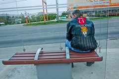 Biker at a bus stop (asianz) Tags: toronto bus ttc stop