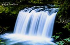Upper Butte Falls (Photos by Wesley Edward Clark) Tags: oregon waterfalls molalla buttecreek scottsmills upperbuttecreekfalls