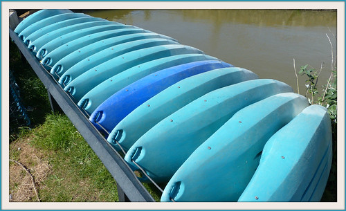 Canoes lined up to dry
