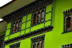 Greenhouse - Explored! (@mons.always) Tags: windows house color green nikon asia bhutan bright d90 18105mm