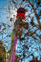 Tanabata Matsuri (endo.kokubun) Tags: saopaulo liberdade