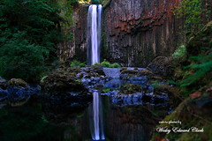 049.5jpg (Photos by Wesley Edward Clark) Tags: oregon waterfalls scottsmills mollala abiquacreek abiquafalls crookedfingerrd