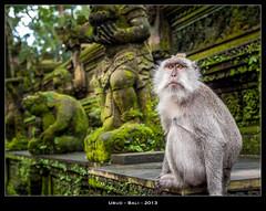 Ubud - Bali (jpmiss) Tags: bali indonesia temple asia olympus asie hinduism ubud hindouisme indonsie jpmiss e620