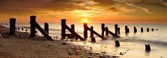 Spurn Point Sunrise. (bojangles_1953) Tags: uk sunrise coast groynes spurn spurnpoint seadefences spurnhead