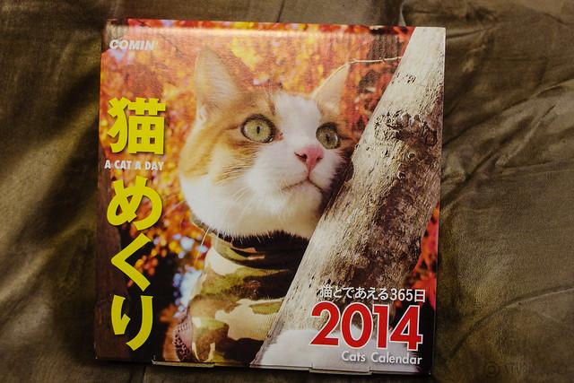 Cats Calendar 2014