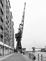 Royal Victoria Dock cranes (cybertect) Tags: london monochrome crane explore docklands royalvictoriadock e16 canonfd24mmf28 londone16 panasonicg2
