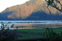 Sunset on the foothills of Mt Abang,Lake Batur,Bali (scinta1) Tags: bali mountain lake water fishing view hillside lakebatur waterscape danaubatur fishfarm kintamani 2013 kedisan mountabang baturbaguscottage