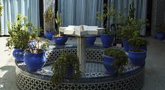 Lazama Synagogue (shane kerry) Tags: food photography asia shane spice markets donkey palace mosque kerry hose spices marrakech medina souks morrocco resturants elbadipalace benyoussefmadrasa shanekerry