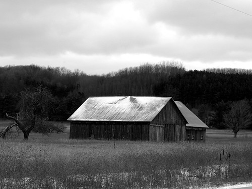 Barn Relic - Benzie County Michigan