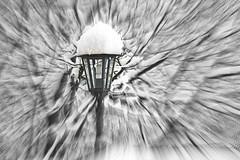 INTRIGO NEVOSO / INTRIGUE SNOWY (GIO_CRIS) Tags: neve