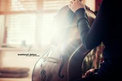 for now i am winter 30/31 (Maegondo) Tags: sunset musician music sun sunlight home zeiss canon germany bayern deutschland bavaria eos 50mm dof bokeh 14 lifestyle depthoffield cello ingolstadt backlicht 5dmark2