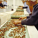 Hazelnuts processing