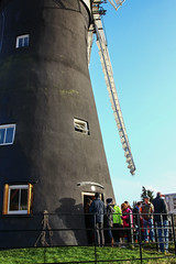 Holgate Windmill, January 2014 (3)