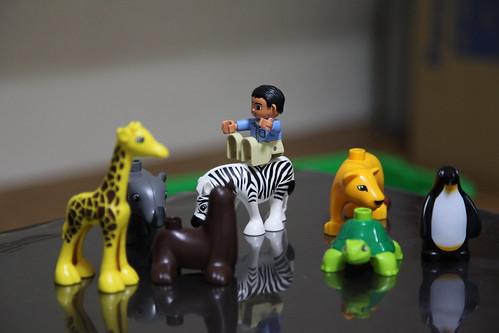 動物大好き