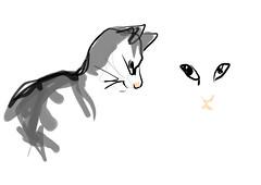 bob (maartje jaquet) Tags: cat sketch kat drawing bob online schets tekeningetje sketchpaint httpwwwonemotioncomflashsketchpaint