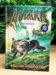 Hunted (Vernon Barford School Library) Tags: new school fiction expedition animal animals reading book high wolf good spirit library libraries reads evil books maggie spirits read paperback fantasy cover junior bond novel hunter covers bookcover middle quest shape paranormal vernon recent wolves metamorphosis bookcovers hunt bonding paperbacks quests shapeshifter novels fictional shapeshift shifting hunted shapeshifters barford expeditions softcover shapeshifting humananimalbond stiefvater vernonbarford softcovers humananimalrelationship 9780545522441