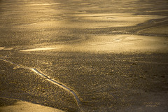 golden ice (mariola aga) Tags: winter lake frozen ice surface sunset light reflection golden tones patterns abstract thegalaxy