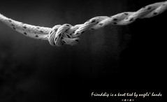 Friendship is a knot (John (thank you >1 million views)) Tags: 7dwf crazytuesdaytheme monochrome knot friendship quote bw blancoynegro sentiment emotion abstract bristol textonpicture