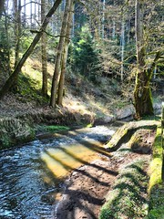 Schattenspiel (almresi1) Tags: shadows lichteinfall bach river sun lichtung sand wood wald forest welzheim