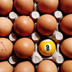 Un neuf dur... (NUMERIK33) Tags: oeuf egg eggs neuf humour intruder number nombre intrus joke explore