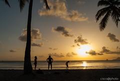 DSC_1166 (Ciscobolo) Tags: martinica martinicahd wonderfulworld martinique sunset beach paradise palms sea caribbean magiclight ciscophoto clouds eden nature treasure