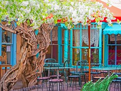 OPEN FOR BUSINESS (Irene2727) Tags: santafe newmexico cafe tables chairs tree blue colors flowers