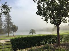 2017-016 Fog Over Laguna Blanca