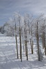 2017-00395 (kjhbirdman) Tags: activities colorado places snowskiing steamboatsprings unitedstates