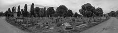 B&W panorama of Kensal Green Cemetery (IanAWood) Tags: kensalgreencemetery kensalgreen london londonsmagnificentsevenvictoriancemeteries londoncemeteries graveart headstones bringoutyourdead theartofremembrance androidphotographer cameraphonephotography mobilesnaps capturedonp9 huaweip9 editedinsnapseed notwalkingwithmynikon