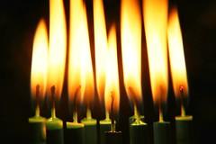 Happy 10th year Macro Mondays (Rod Anzaldua) Tags: hmm macro monday macromonday 10 10years birthday