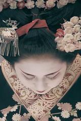 梅花祭 (小川 Ogawasan) Tags: japan japon kyoto baikasai maiko blossom 梅花祭 festival matsuri tea