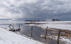 It was a bright cold day in April... (Tracey Rennie) Tags: alberta april snow fence nearcalgary rural farm clouds