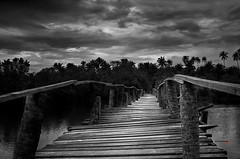 Seguir adelante no es la única opción... pero es la mejor decisión. (bit ramone) Tags: camino road puente bridge bitramone