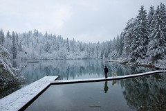 Lake Cresta (Marcel Cavelti) Tags: bq0a0059bearb2 crestasee grisons graubünden switzerland swiss alpin lake trin flims forest water snow winter spring april steg hund mann man