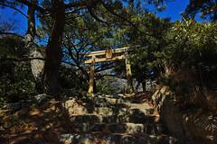 20170413_DP0Q1235 (NAMARA EXPRESS) Tags: landscape travel shrine tree stair tripod setonaikainationalpark nationalpark setonaikai daytime spring fine outdoor color foveonclassicblue okinoshima tomogashima wakayama japan foveon x3 sigma dp0 quattro wide ultrawide superwide namaraexp