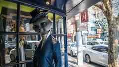Strange+Cat+Statue+-+French+Concession%2C+Shanghai+-+China