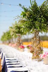 054_F2V_042017 (californiacutflowercommission) Tags: california family headshots photographer photography sandiego southern wedding