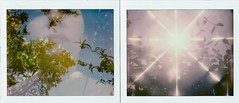 Here and now (marion (milky soldier)) Tags: spring polaroidlovespring poladiptych roidweek polaroidweek2017 nature impossible analoguelove analogue ishootfilm film carpediem light sky lips diptych roidweek2017 polaroidweek spectra doubleexposure