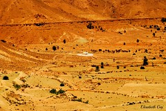 Djerba 2010 155 (Elisabeth Gaj) Tags: elisabethgaj tunisia afryka travel landscape natur nature