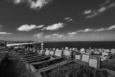 DSC01763 (Damir Govorcin Photography) Tags: graves landscape water sky clouds waverley cemetery sydney natural light blackwhite monochrome sony a7ii zeiss 1635mm wide angle perspective creative composition