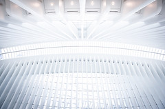 The Ceiling of Oculus (dpvch) Tags: oculus world trade center architecture path station new york city building usa america