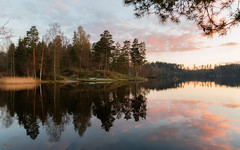 (Øyvind Bjerkholt (Thanks for 38 million+ views)) Tags: sørsvann arendal norway sunset reflections nature landscape water lake scenery beautiful canon