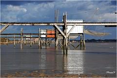 Saint-Laurent-de-la-prée DSC_1854 (boguy2447) Tags: cabanes pêcheurs charente estuaire 17 2007 carrelet